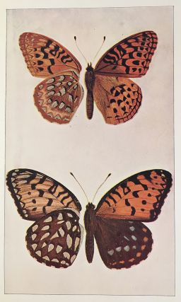 Every-Day Butterflies; A Group of Biographies